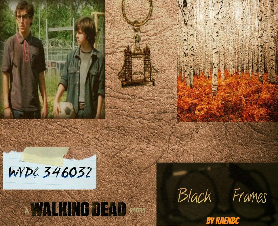 Black Frames:  A Walking Dead Story by Orange-FeatherCanary