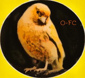 Orange-FeatherCanary's Profile Picture