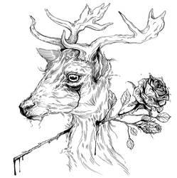 Deer by Carliihde