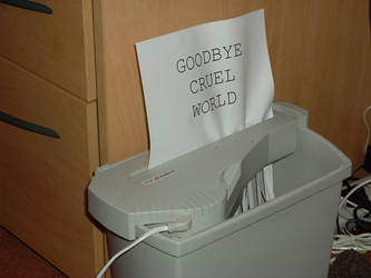 Goodbye... by mea-culpa