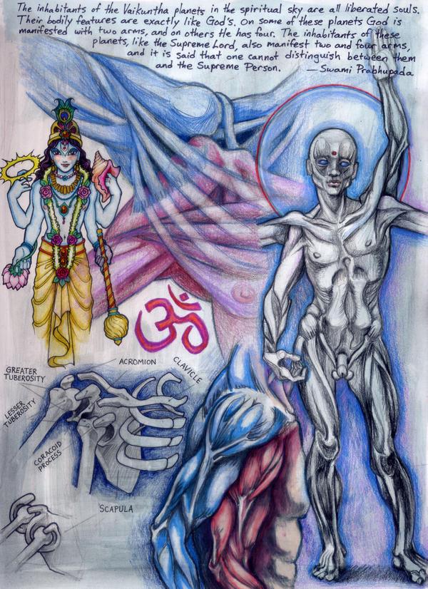 Anatomy of a Krishna by AstroChan