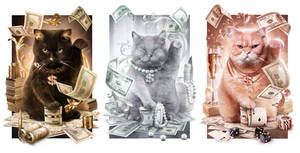Fortune Cash Cats