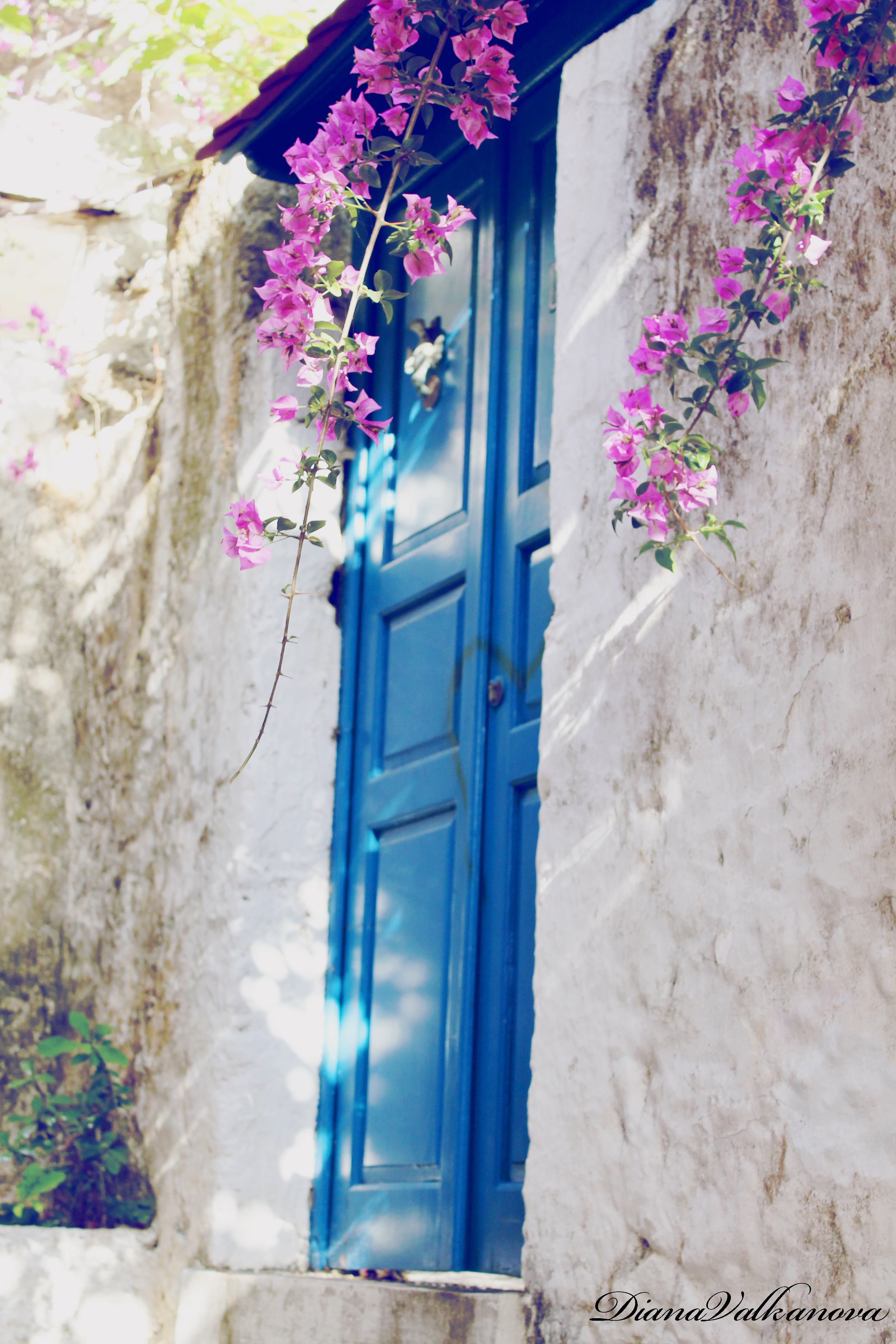 lovely. by DianaValkanova