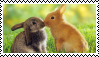 Stamp: Bunnies Kissing by SealyTheSeal