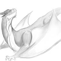 Dragon 5.0 WIP by wimpified