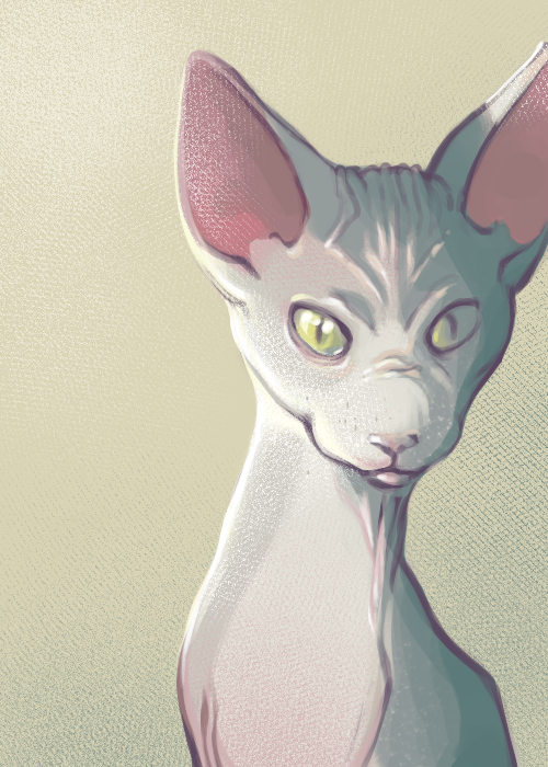Hairless Beauty by Cradlesin