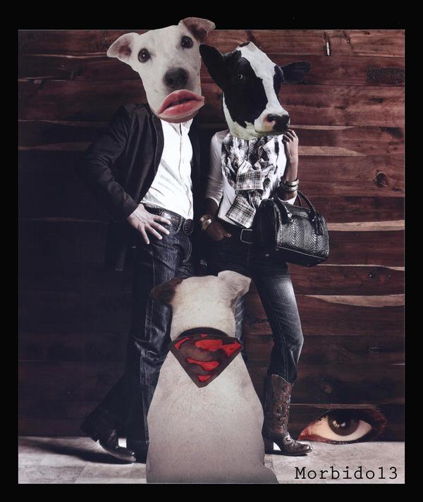 Animals by Morbido13
