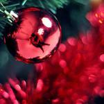 merry christmas, everone :D