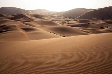 Sunset in Sahara by kingmouf