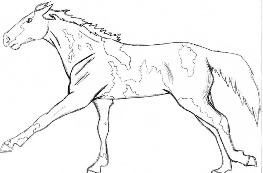 paint horse coloring pages - paint or pinto horse by angry wolf for life on deviantart
