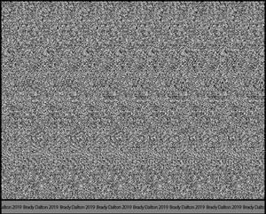 3D Stereogram Hidden Image