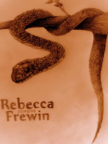 Post Your Latest Tree_Snake_Sketch_by_Rebecca1208