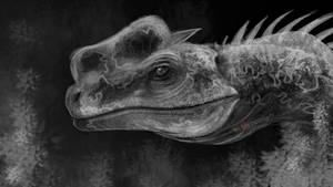 Rough Dilo(?) Head Sketch by Rebecca1208