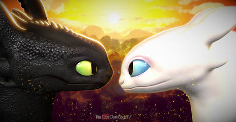 Toothless + Light Fury - How to Train Your Dragon