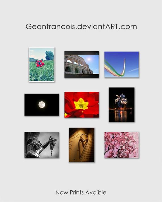 Geanfrancois's Profile Picture