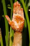 ~shaded Arabic henna tattoo~