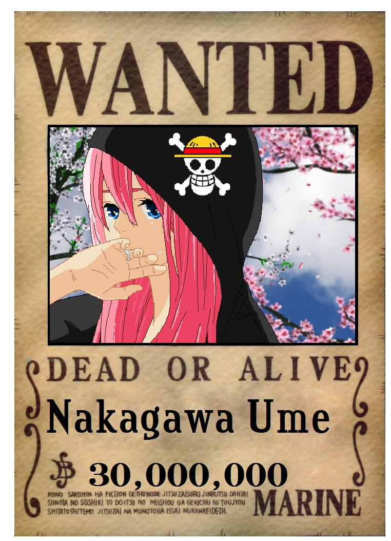 one piece wanted poster nami. Black Bedroom Furniture Sets. Home Design Ideas