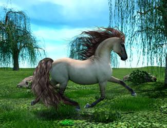 horse by wuckylady
