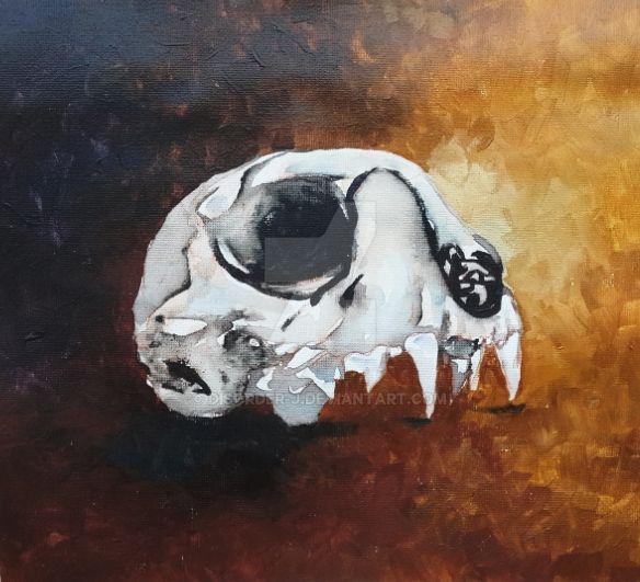 Cat skull by Disorder-J