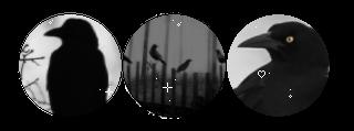 F2u Crow Divider by clowngutts