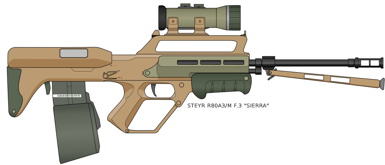 Steyr R80A3/M SAW by NikkoJT