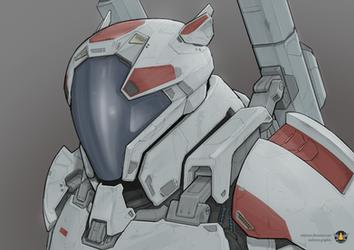 Director Kowalski (helmet on)