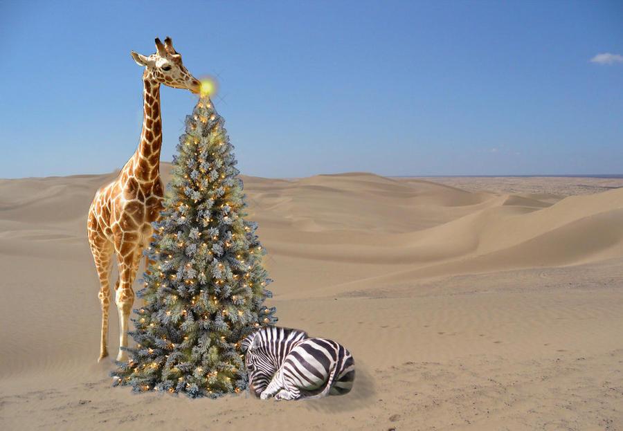 Safari Christmas by Ybpopular