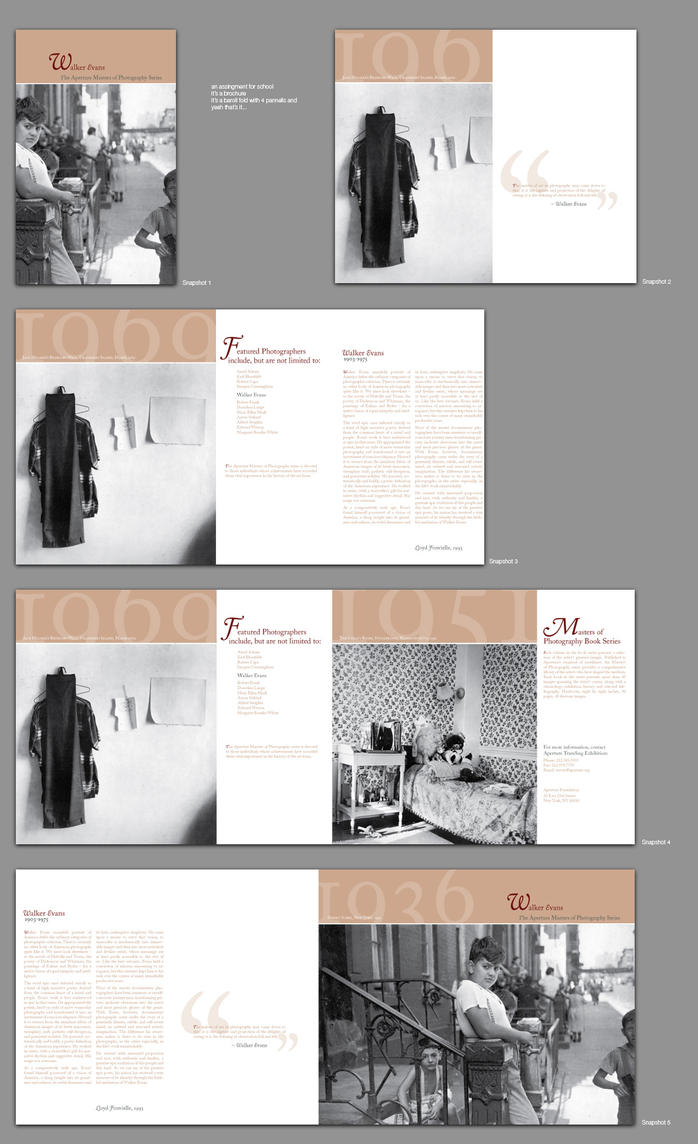 brochure for class project by kenji2030