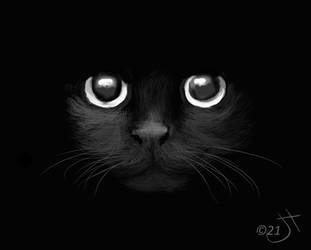 Black cat #2 by enug66