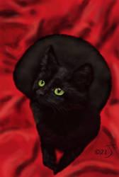 Black Cat #3 by enug66
