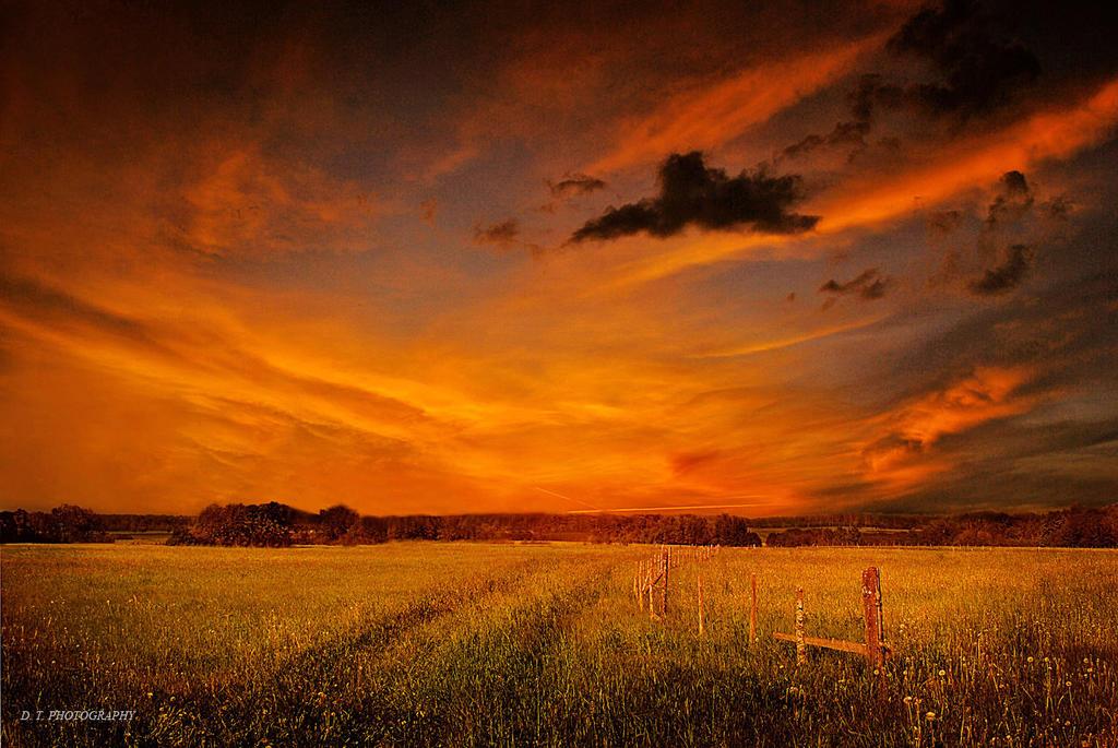Sunset 14 by orlibraorli