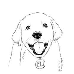 Cute dog sketch