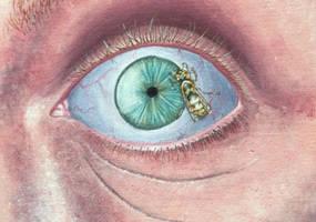 Bug Eyed by Aorean