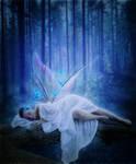 Fairy's Dreams