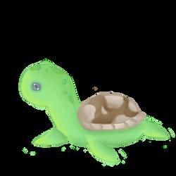 Turtle by Erisember