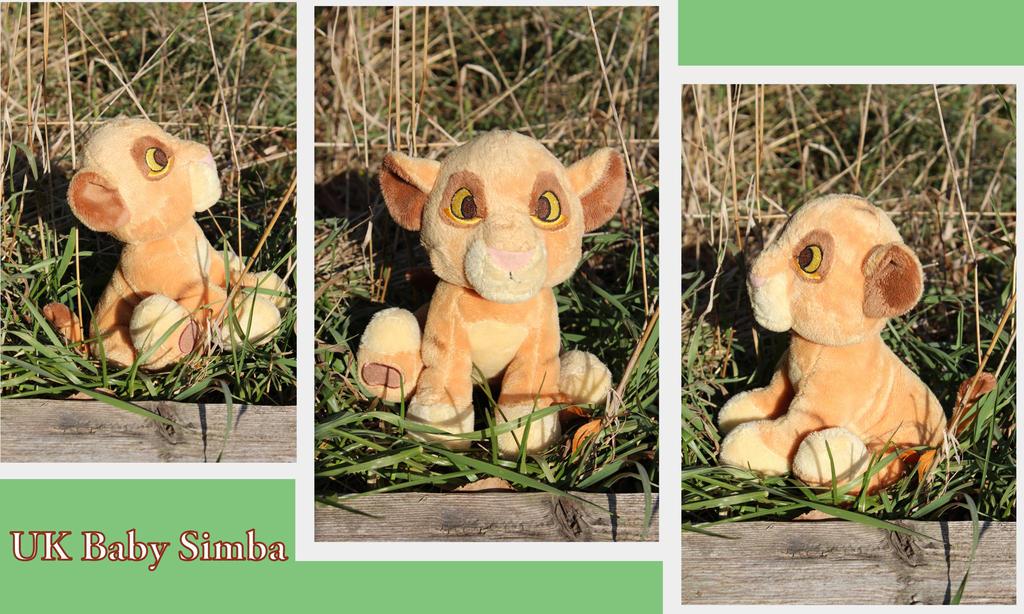 UK baby Simba by Laurel-Lion