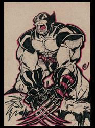 Wolverine W.U.S.S. by -adam-
