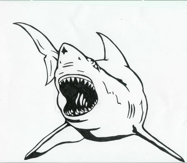 Line Art Shark : Great white shark tattoo by karadarkthorn on deviantart
