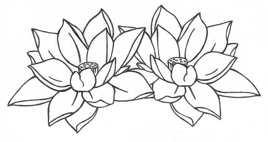 Lotus flower outline lektonfo lotus flower outline mightylinksfo