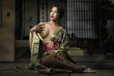 Geisha by BrunoContiArt