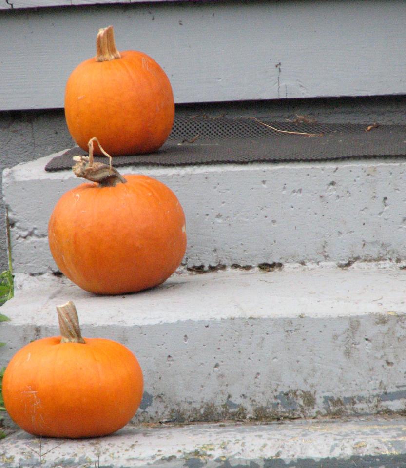 Nature Made Pumpkin Seed Oil Mens Advanced