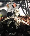 Spooky Skeleton Stock