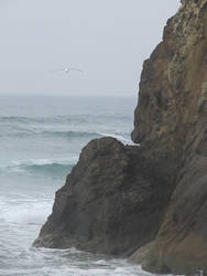 cliffs over the ocean stock by thiselectricheart