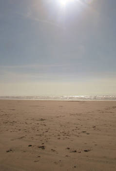 beach during spring stock