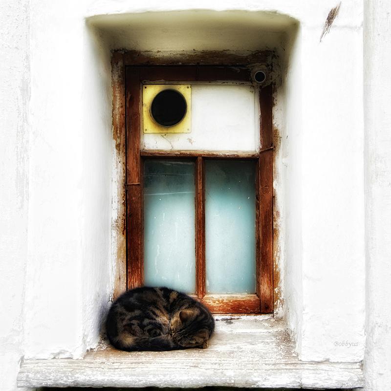 sweet dream by Bobbyus