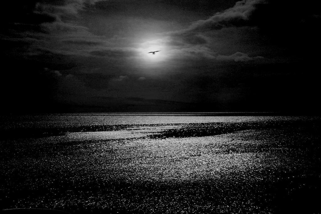 Night Flight by Bobbyus