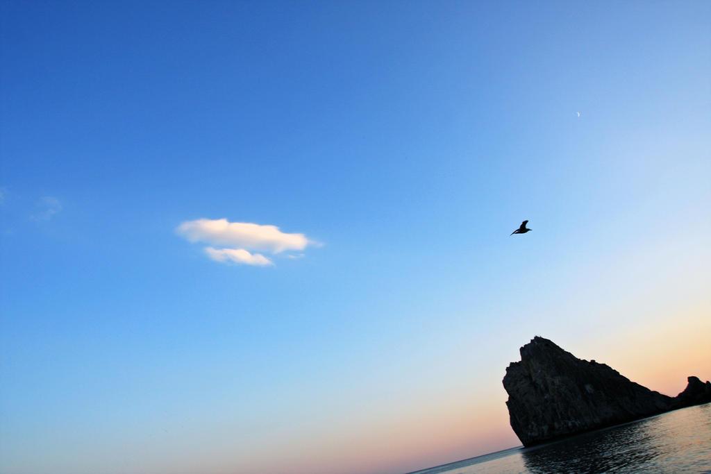 Free Flight by Bobbyus
