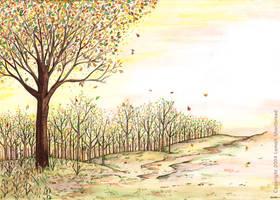Forest Area by yuzukko
