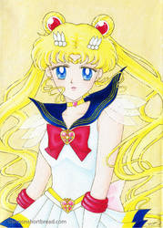 Super Sailor Moon on canvas