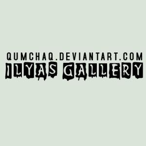 qumchaq's Profile Picture